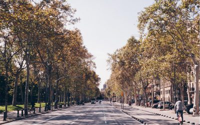 Enjoy a morning in Barcelona like a local